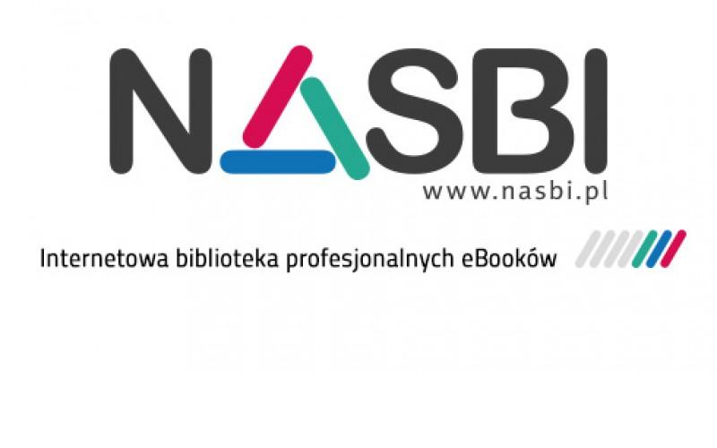 Gdzie szukać nowych przychodów? Czyli drzwi otwarte do NASBI.pl