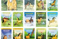 Białek, kucyk z Gotlandii – doskonała lektura dla dzieci rozpoczynających samodzielne czytanie