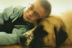 Chłopiec i pies – wzruszająca i niosąca nadzieję historia prawdziwa