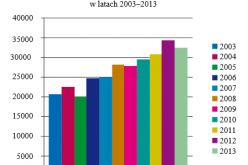 Raport Biblioteki Narodowej o rynku wydawniczym w Polsce w 2013 r.