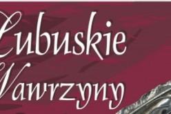 Wręczono Lubuskie Wawrzyny za 2018 r.