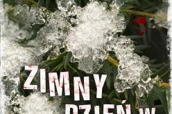 Zimny dzień w Raju – poruszający literacki kryminał w serii AMBERA spod znaku Simona Becketta