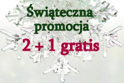 Świąteczna promocja 2+1