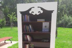 Szafa biblioteczna w Parku Ratuszowym