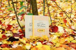 """""""Gdy rodzice byli dziećmi"""" wydawnictwa MAC Edukacja na Festiwalu Literatury dla Dzieci 2017"""