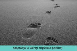 """Wydawnictwo 44.pl poleca adaptację powieści Daniela Defoe """"Robinson Crusoe""""  w serii """"Czytamy w oryginale"""", przeznaczonej do nauki języka angielskiego"""