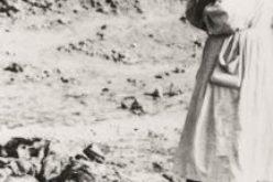 """Zginęli, bo byli Polakami. Koszmar """"operacji polskiej"""" NKWD 1937–1938 – zaproszenie na promocję albumu"""