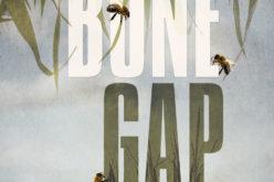 """""""Zapadła dziura Bone Gap"""" – cos dla fanek i fanów 13 POWODÓW! – kto jest chetny na książkę?"""