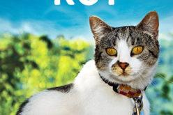 """Premiera książki """"Mój przyjaciel kot"""""""