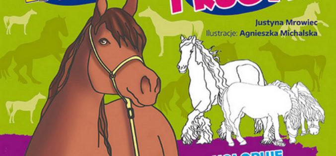 Kolorowa edukacja. Konie i kucyki
