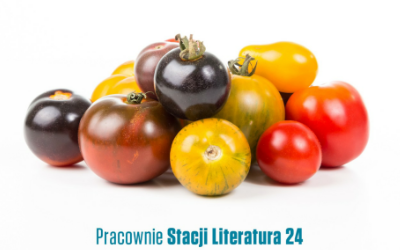 Rusza nabór do Pracowni Stacji Literatura 24