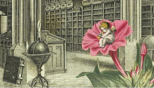 Otwarte seminaria bibliotekoznawcze