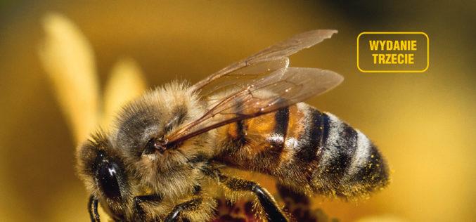 Pszczoły. Poradnik hodowcy, Werner Gekeler