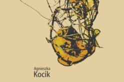 Agnieszka Kocik,  Les francs-tireurs de la pensée