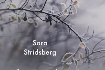 Sara Stridsberg,  Antarktyka miłości